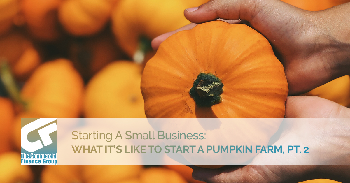 Starting A Small Business What It's Like To Start A Pumpkin Farm Pt. 2